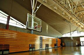 Image description: High school gymnasium