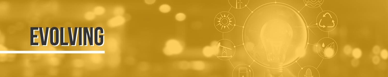 Marco-MIT-Digital-Ebook-Chap4-Evolving