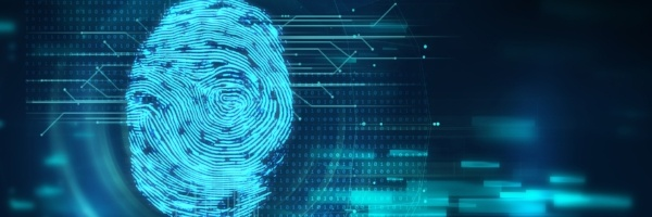 cyber security fingerprint